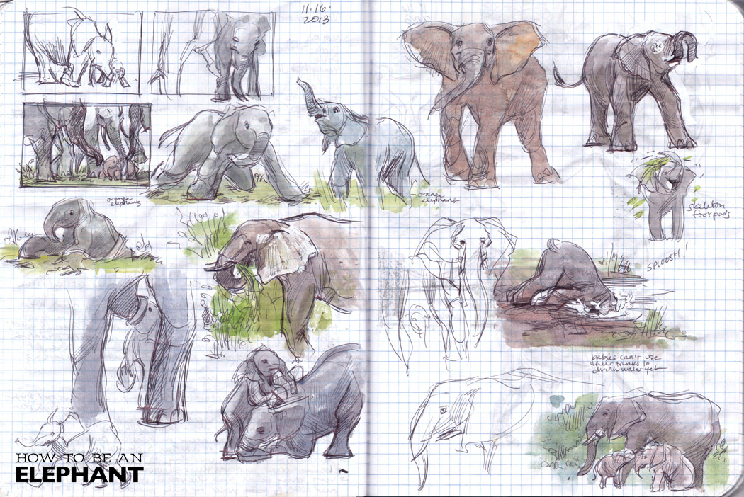 ROY_ElephantFamily01
